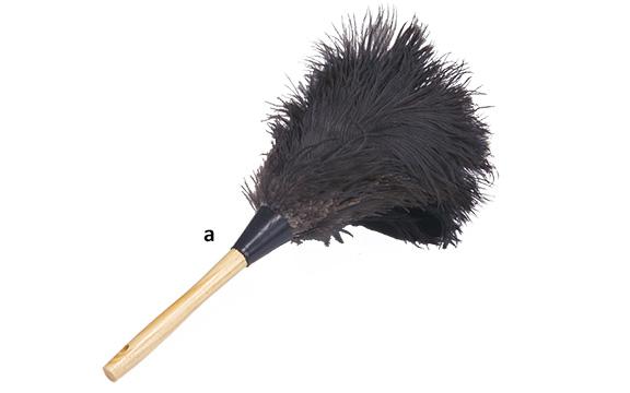 Premium Black Feathers